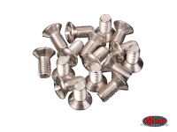 more details on Cab door hinge screw set, stainless - Type 2, >67